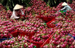 Trái cây Việt Nam có mặt tại 60 quốc gia và vùng lãnh thổ