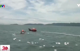 Ứng phó với sự cố tràn dầu trên biển do tàu chìm