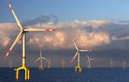 Trang trại năng lượng gió trên đại dương đủ cấp điện cho cả thế giới