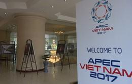 Giới thiệu văn hóa Việt Nam bên lề Hội nghị SOM 1