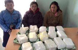 Gia tăng vận chuyển ma túy xuyên quốc gia