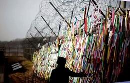 Mong ước đoàn tụ hai miền Triều Tiên