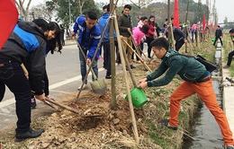 Thừa Thiên - Huế phát động Tết trồng cây