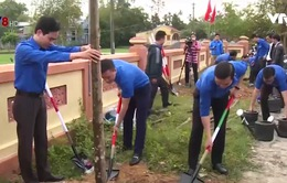 Thanh niên Đà Nẵng ra quân trồng 1.000 cây xanh