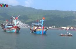 Đà Nẵng còn 20 phương tiện đang hoạt động trên biển