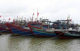Các tỉnh Bắc Trung Bộ khẩn trương ứng phó bão số 10