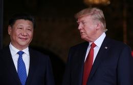 Chủ tịch Tập Cận Bình gặp Tổng thống Trump: Sự kiện quốc tế nổi bật trong tuần