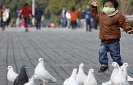 Trung Quốc đóng cửa các chợ gia cầm do lo ngại dịch cúm gia cầm