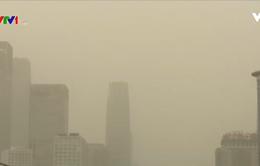 Bão cát đổ bộ, Trung Quốc đưa ra cảnh báo màu xanh về ô nhiễm