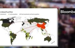 """Trung Quốc và cuộc """"xâm chiếm"""" đất nông nghiệp toàn cầu"""