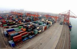 Xuất khẩu của Trung Quốc sang Cuba giảm mạnh trong năm 2017