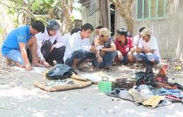 Triệt phá tụ điểm đá gà ăn tiền quy mô lớn tại Vĩnh Long