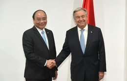Việt Nam đặc biệt coi trọng quan hệ hợp tác với Liên Hợp Quốc