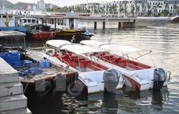 Liên tiếp bắt giữ nhiều tàu chở khách tham quan vịnh Hạ Long trái phép