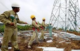 Bình Định: Hơn 10.000 tỷ đồng phát triển lưới điện