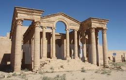 Iraq giải phóng thành phố cổ 2.000 năm tuổi Hatra