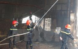 Cháy công ty gỗ tại Bình Phước, thiệt hại khoảng 1 tỷ đồng