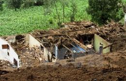 Guatemala: Lở đất khiến 11 người thiệt mạng