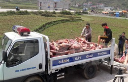 Cao Bằng: Thu giữ hơn 2 tấn thịt lợn không rõ nguồn gốc