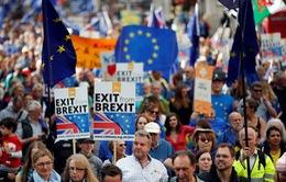 Nghìn người dân xuống đường tuần hành phản đối Brexit