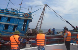 Xử lý nghiêm tàu cá đánh bắt bất hợp pháp