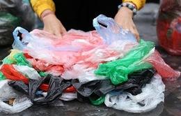 Tăng thuế bảo vệ môi trường với túi nilon: Cơ hội cho nhà sản xuất túi tự hủy?