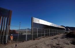 Kế hoạch xây tường biên giới của ông Trump nguy cơ bị trì hoãn