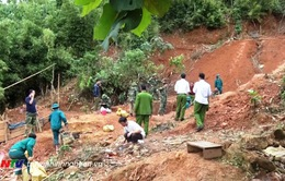 Phá hủy 12 hầm vàng trái phép tại Tương Dương, Nghệ An