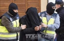 Tây Ban Nha, Maroc phối hợp bắt giữ một nhóm tuyển mộ thành viên cho IS