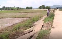 Đăk Lăk: Tuyến đê bao Quảng Điền sạt lở nghiêm trọng