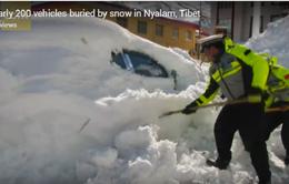 Trung Quốc: Gần 200 phương tiện giao thông bị vùi trong tuyết