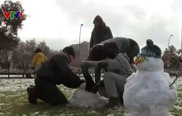 Thú vị cuộc thi ném tuyết tại Chile