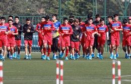 Các chuyên gia thể lực của đội tuyển Việt Nam