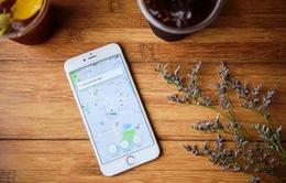 Cấp phép thí điểm Uber tại Việt Nam