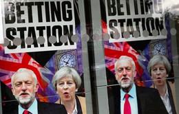 Trào lưu cá cược trong bầu cử ở Anh