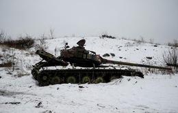 Các bên nhất trí gây áp lực thực thi ngừng bắn tại Ukraine
