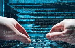 """Mạng máy tính của Chính phủ Ukraine đã bị """"đánh sập"""" hoàn toàn"""