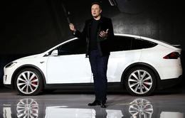 Sau sedan và crossover, Tesla sẽ ra mắt một mẫu xe SUV