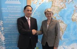 Tổng Giám đốc UNESCO đánh giá cao đóng góp thiết thực của Việt Nam