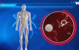 Áp dụng công nghệ mới trong điều trị ung thư
