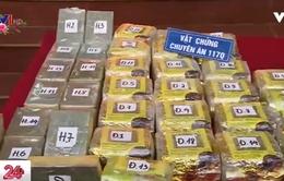 Nam Định phá án ma túy lớn nhất từ trước tới nay