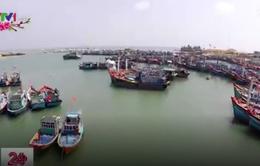 Ngư dân miền Trung mở biển đầu năm mới