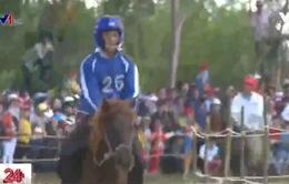 """""""Kỵ sĩ"""" đua ngựa Gò Thì Thùng: Không cương, đầu đội mũ... bảo hiểm"""
