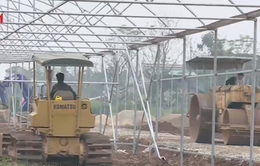 Mở rộng hạn điền, tích tụ ruộng đất: Thay đổi để phát triển