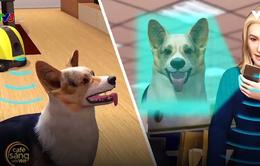 Robot gia đình thông minh giúp chăm thú cưng