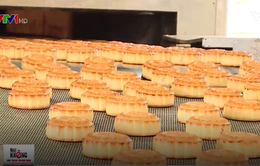 Bánh Trung thu đảm bảo an toàn thực phẩm với dây chuyền bán tự động
