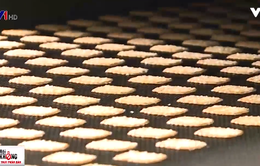 Nhiều tiêu chuẩn khắt khe cho bánh quy xuất khẩu Nhật Bản