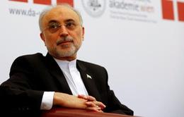 Iran cảnh báo nối lại hoạt động làm giàu urani