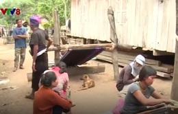 Khó loại trừ bệnh sốt rét: Trở ngại từ chính người dân