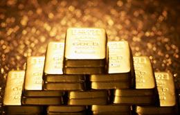 Giá vàng trong nước đồng loạt đi lên